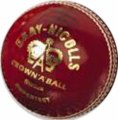 Gray Nicolls Super Test Ball