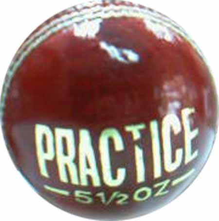 DS Practice Ball